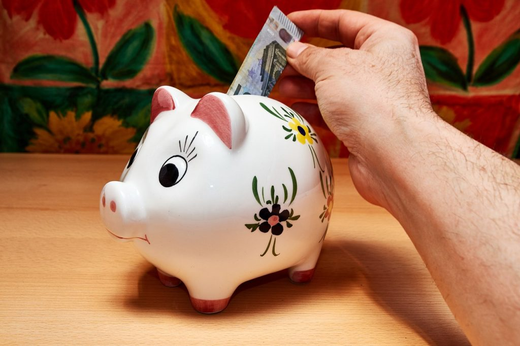 Savings Piggy Bank Hand Money Save  - horstkoenemund / Pixabay